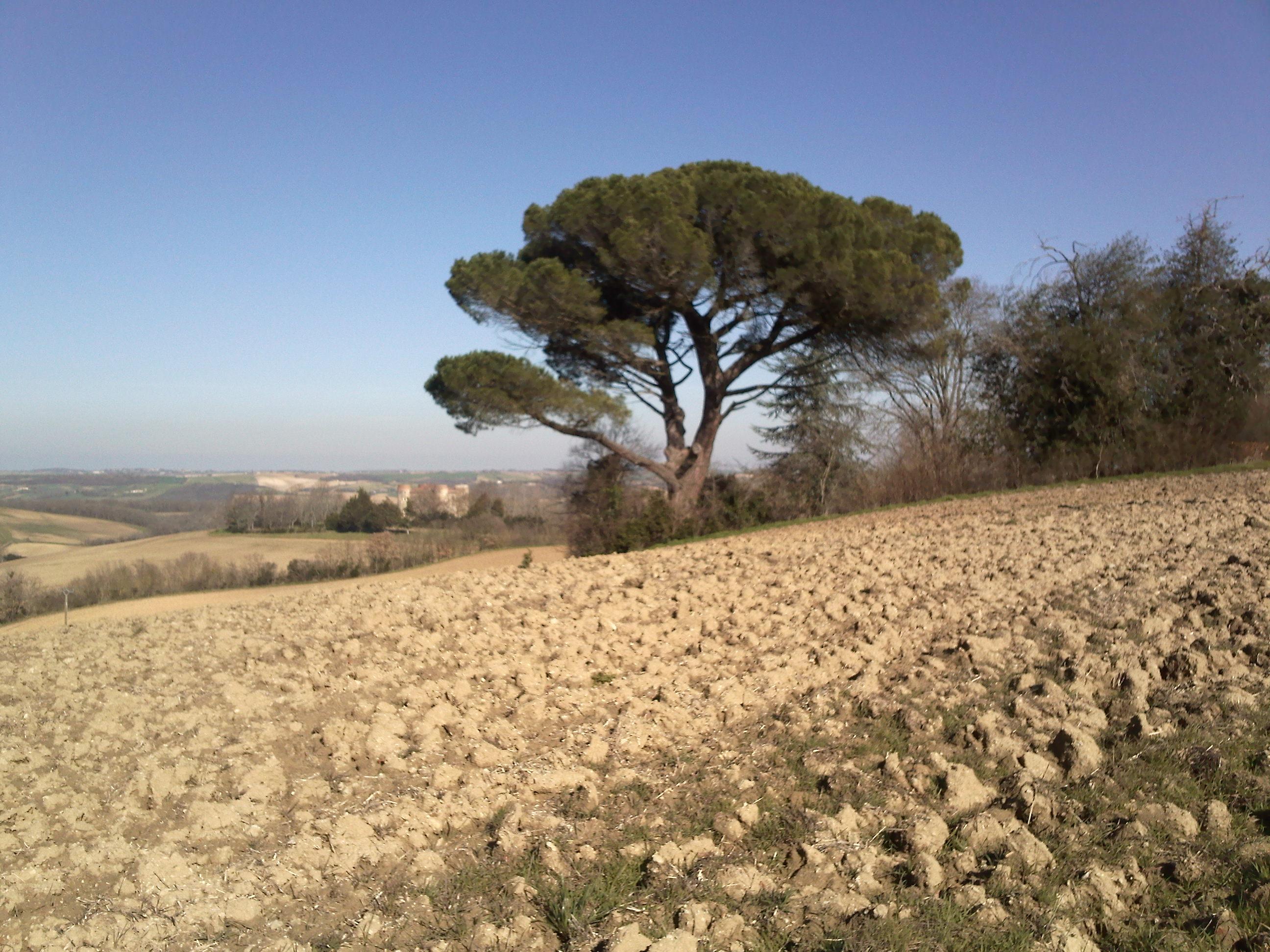 A proximité de Castagnac